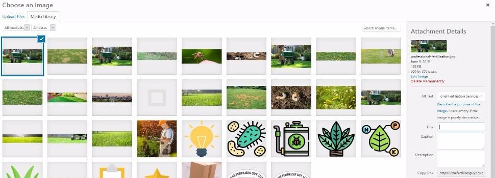 Adding Alt Text to Image in WordPress